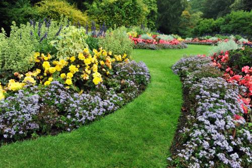 The gardenian